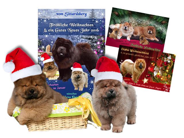Weihnachtskarten-Aktion 2017